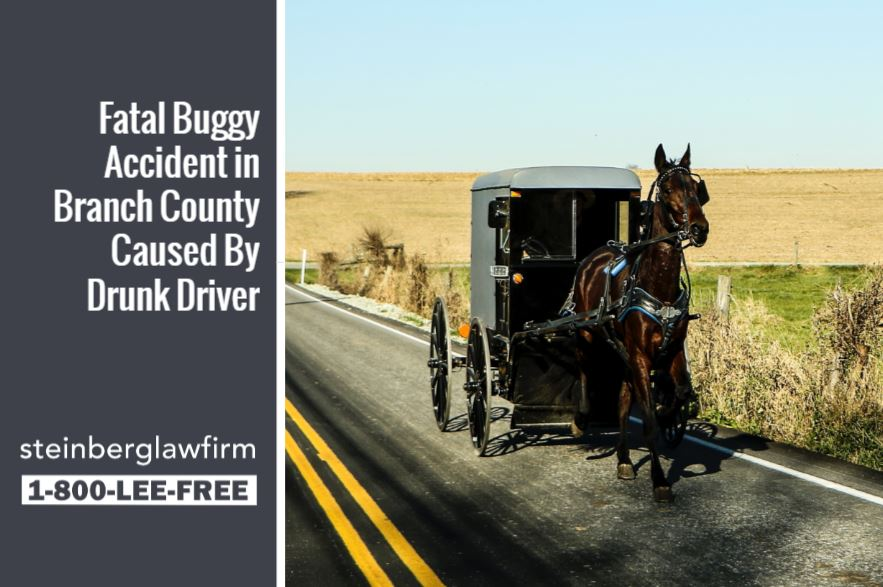 fatal buggy accident